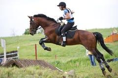 Eventer en caballo es supera la cerca Foto de archivo libre de regalías