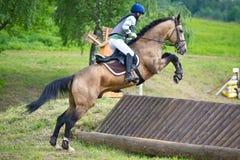 Eventer en caballo es supera la cerca a campo través Fotografía de archivo libre de regalías