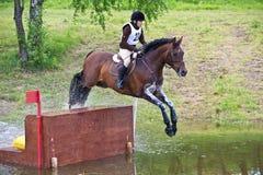 Eventer en la cerca de negociación del campo a través del caballo Foto de archivo