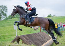 Eventer on horse negotiating cross country fence Stock Image