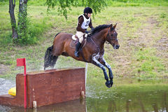 Eventer on horse  negotiating cross country fence Stock Photo