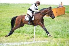 Eventer on horse is negotiating the open ditch Stock Photos