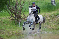 Eventer on horse negotiating Water jump Royalty Free Stock Image