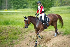 Eventer on horse is overcomes the cross-country fence Stock Photography