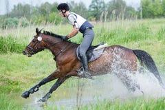 Eventer no cavalo é supera o salto de água Imagens de Stock Royalty Free
