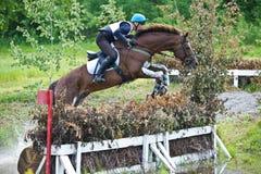 Eventer på hästen som hoppar över hurdel Royaltyfri Bild