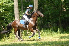 Eventing images stock