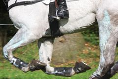 Eventing Stock Images