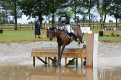 Eventing - Equestrian triathlon Royalty Free Stock Images