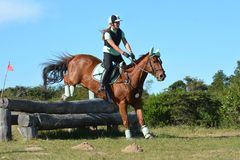 Eventing horse jumping over logs Stock Images