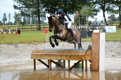 Eventing horse jumping the table Stock Images