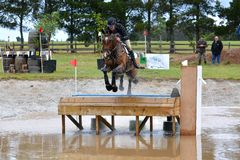 Eventing horse through water complex Stock Images