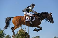 Eventing Master Jack II. Ed Eltham riding Bay horse  Master Jack II, jumping a fence at a three day  cross country event  CCI*** held at Blenheim Palace Stock Photography