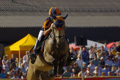 Eventing performance, Marbach Stallion Parade Stock Photography