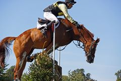 Eventing possible start of a rotational fall. Close escape from a rotational fall.  S Griffiths riding Danaan Prince at Blenheim CCI*** International horse Stock Photography
