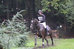 Eventing SGW Hattem the Netherlands. Forrest royalty free stock photos