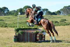 Eventing team on cross-country track Stock Images