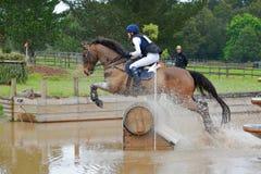 Eventingspaard die in complex water springen Stock Foto