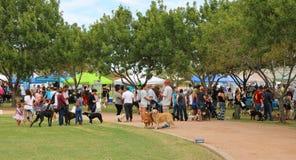 Evento Barktoberfest 2015 do cão Fotos de Stock Royalty Free