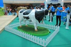 Evento 2015 da exploração agrícola da produção animal de Hong Kong Dutch Lady Pure Fotos de Stock