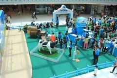 Evento 2015 da exploração agrícola da produção animal de Hong Kong Dutch Lady Pure Fotografia de Stock Royalty Free