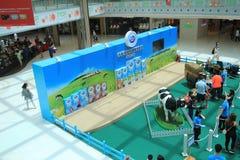 Evento 2015 da exploração agrícola da produção animal de Hong Kong Dutch Lady Pure Imagem de Stock Royalty Free