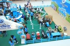 Evento 2015 da exploração agrícola da produção animal de Hong Kong Dutch Lady Pure Fotos de Stock Royalty Free