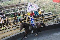 Evento da mostra do cavalo em Taiwan Imagens de Stock