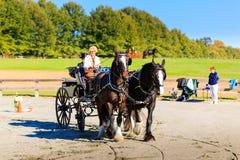 Evento de James River Driving Association en Staunton Va Imagenes de archivo