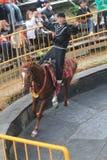 Evento de la demostración del caballo en Taiwán Foto de archivo