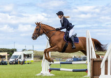 Evento de salto de la demostración del caballo gymkhana Foto de archivo