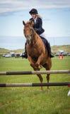Evento de salto de la demostración del caballo gymkhana Fotos de archivo