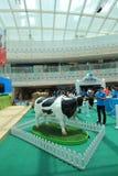 Evento 2015 dell'azienda agricola di zootecnia di Hong Kong Dutch Lady Pure Fotografia Stock