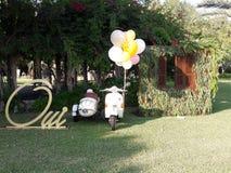 evento di nozze alla spiaggia nel Libano Immagini Stock Libere da Diritti