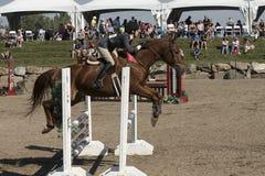 Evento equestre - ligação em ponte Fotografia de Stock Royalty Free