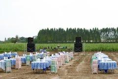 Evento rural tailandés tradicional del banquete Foto de archivo libre de regalías