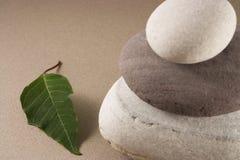 In evenwicht brengende kiezelstenen met een groen verlof Stock Fotografie