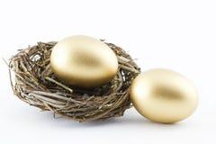 In evenwicht gehouden met Gouden Hoop Stock Foto