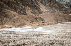 Everest Base Camp Trek in Nepal Stock Images