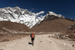 EVEREST BASE CAMP TREK/NEPAL - OCTOBER 24, 2015. EVEREST BASE CAMP TREK/NEPAL - OCTOBER 24, 2015: Rear view of woman traveler with a backpack walking on a stock photos