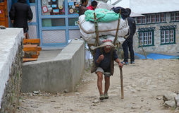 EVEREST CAMP, NATIONAL PARK, NEPAL - APRIL 15. 2017. The old sherpa porter carrying heavy sacks. In the Himalayas at Everest Base Camp trek ,Nepal.Sherpas are Royalty Free Stock Photos