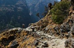 Everest Nepal Himalaya Stock Photos
