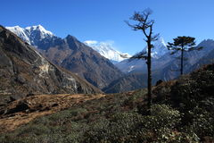 Everest view from Deboche Royalty Free Stock Images
