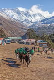 Everest View. Trekking from Deboche to Khumjung Nepal Sagamatha National Park Stock Photos