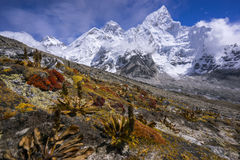 Everest from the way to Kala Pattar. Gorak Shep. During the way to Everest base camp. Stock Photography