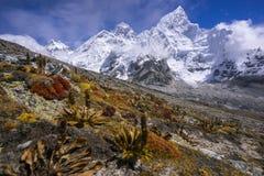Everest from the way to Kala Pattar. Gorak Shep. During the way to Everest base camp. Sagarmatha national park. Nepal Stock Photography