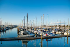 Everett Marina During The Day. Sail boats moored at the Everett Marina during the day Royalty Free Stock Photography