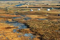 Everglade Stock Photo