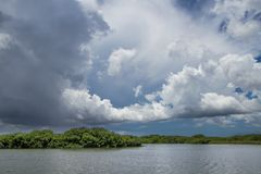 Everglades湖 免版税库存照片