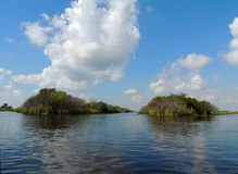 Everglades Canals. A view of the Everglades canals from an air boat.  A beautiful day to be in nature.  The Everglades is one of the most endangered water Royalty Free Stock Photo